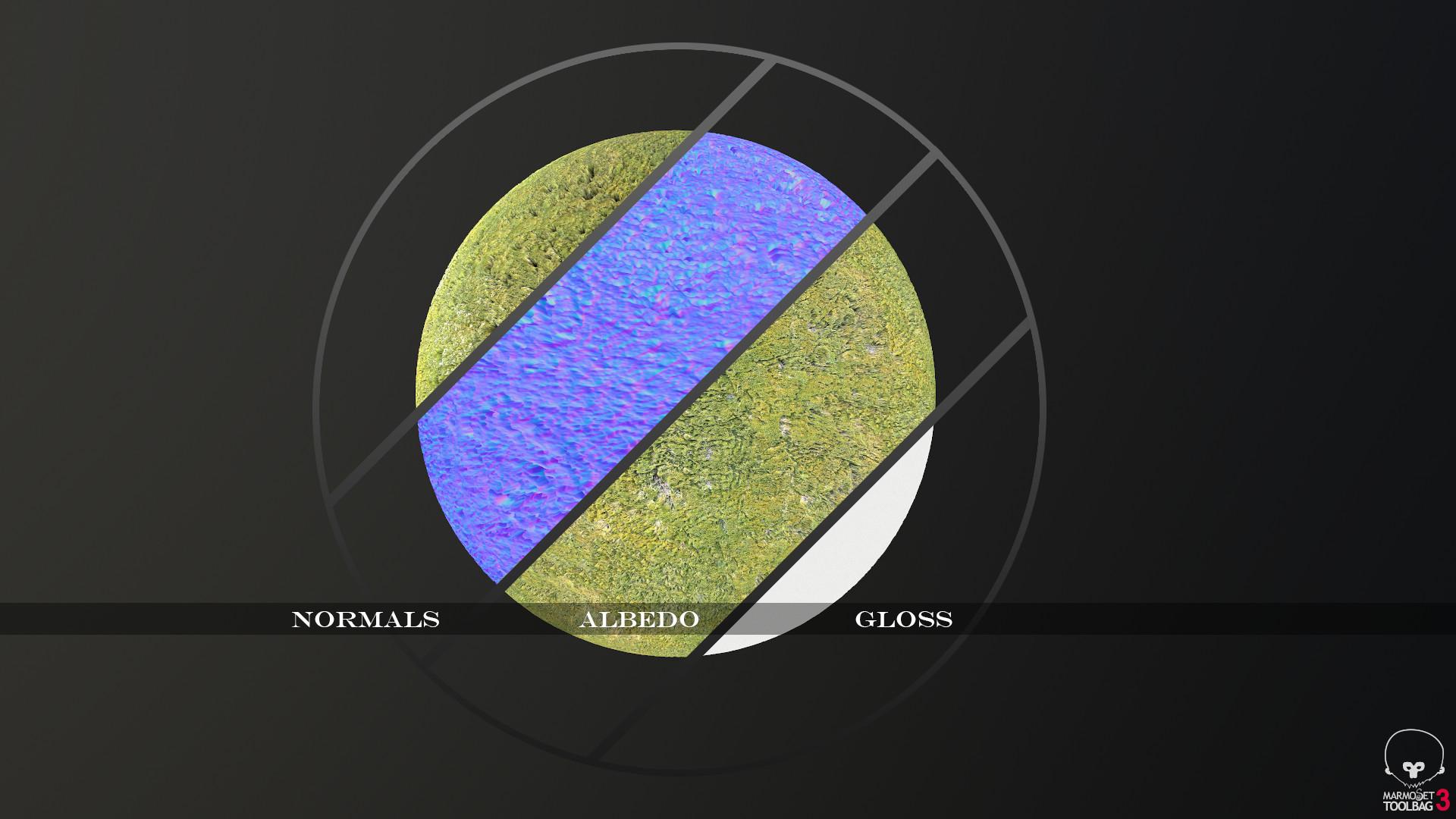 Breakdown: Slime Mold
