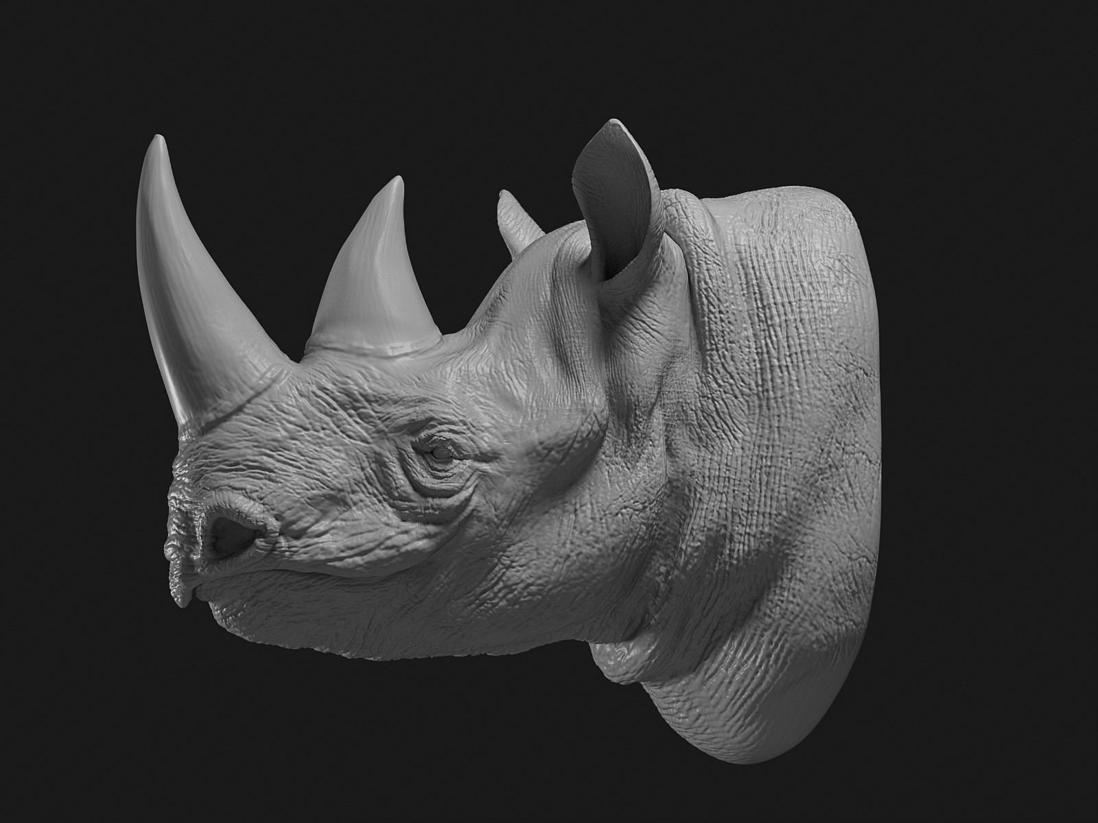 Cgmonkeyking rhino clay pp 0002