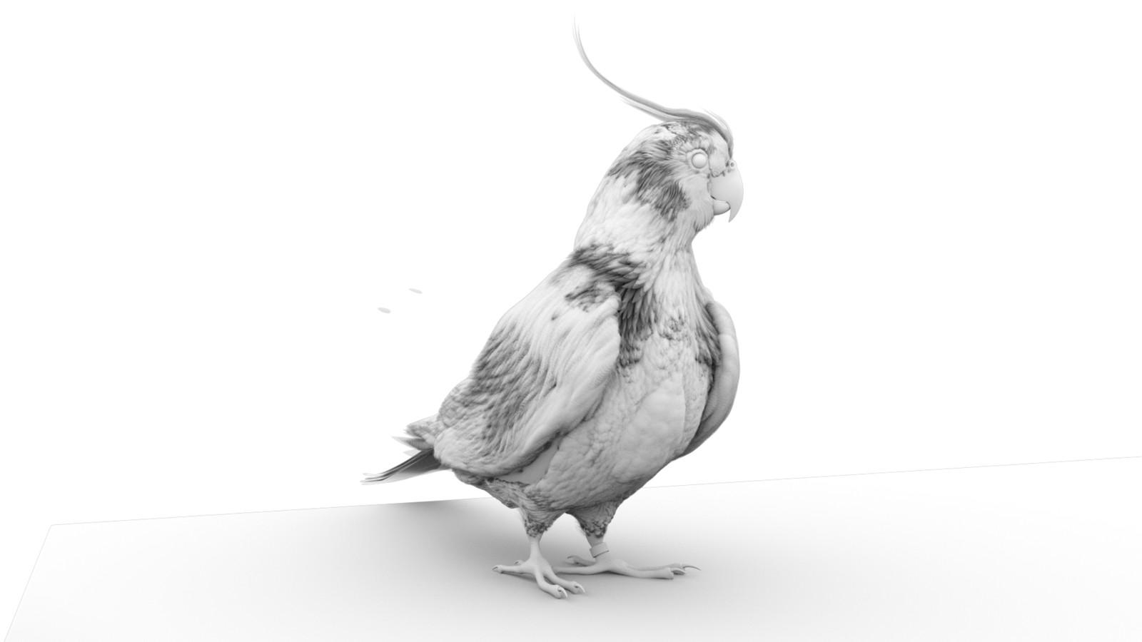 AO - Feather