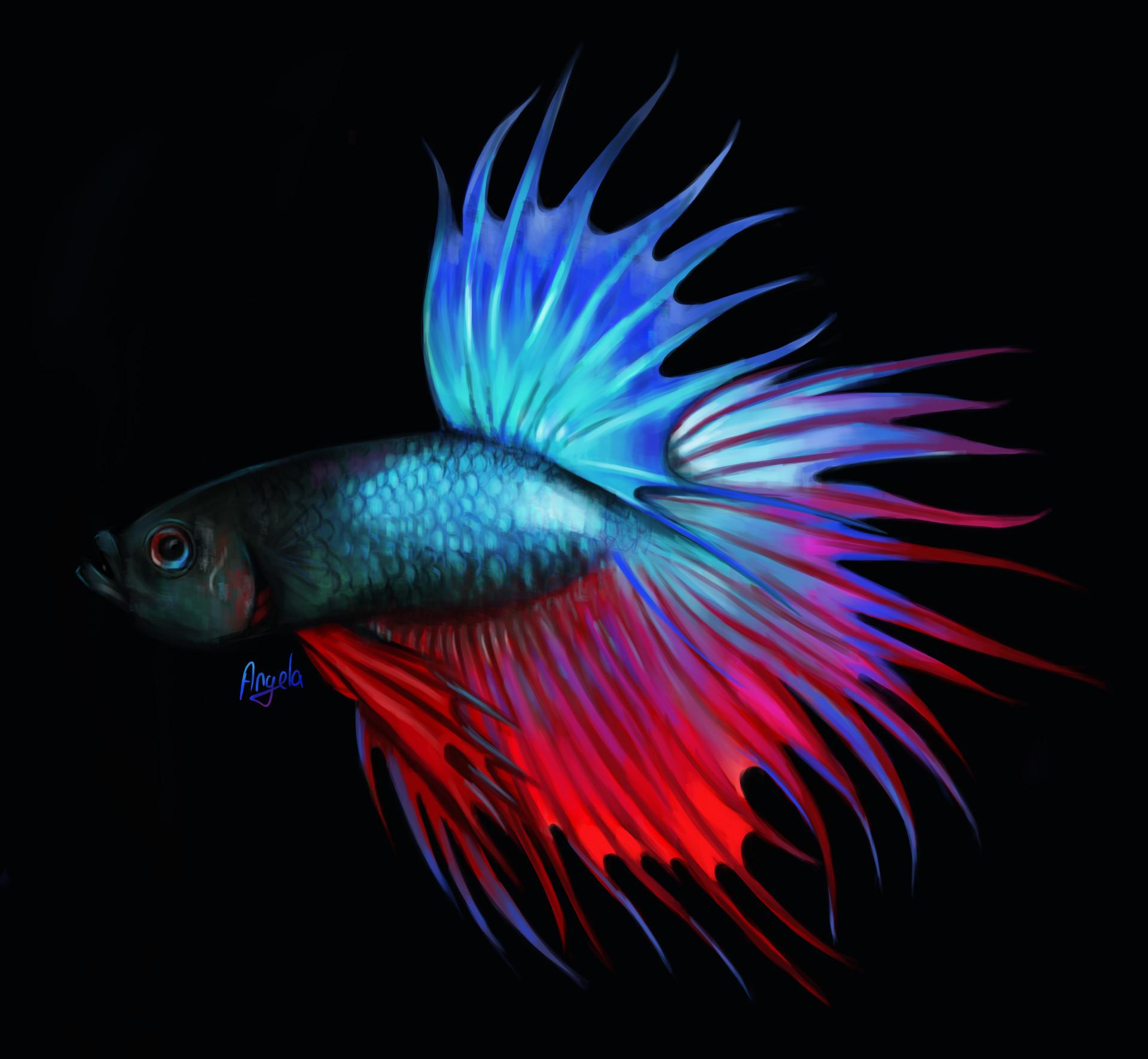 ArtStation - Japanese Fighting Fish, Angela Kravcevich