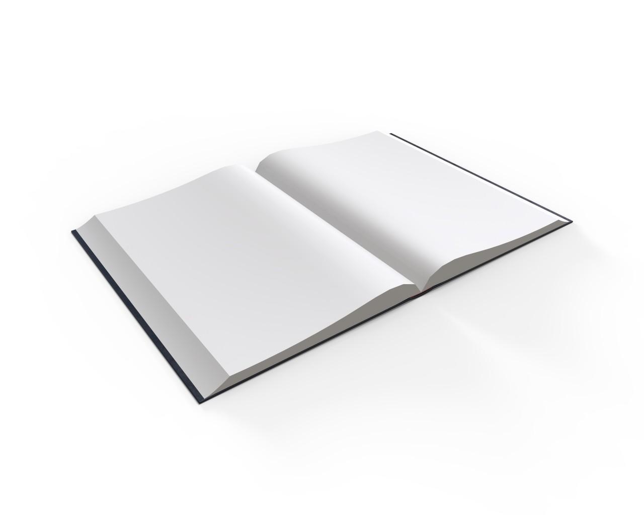 Ivan marques book r1