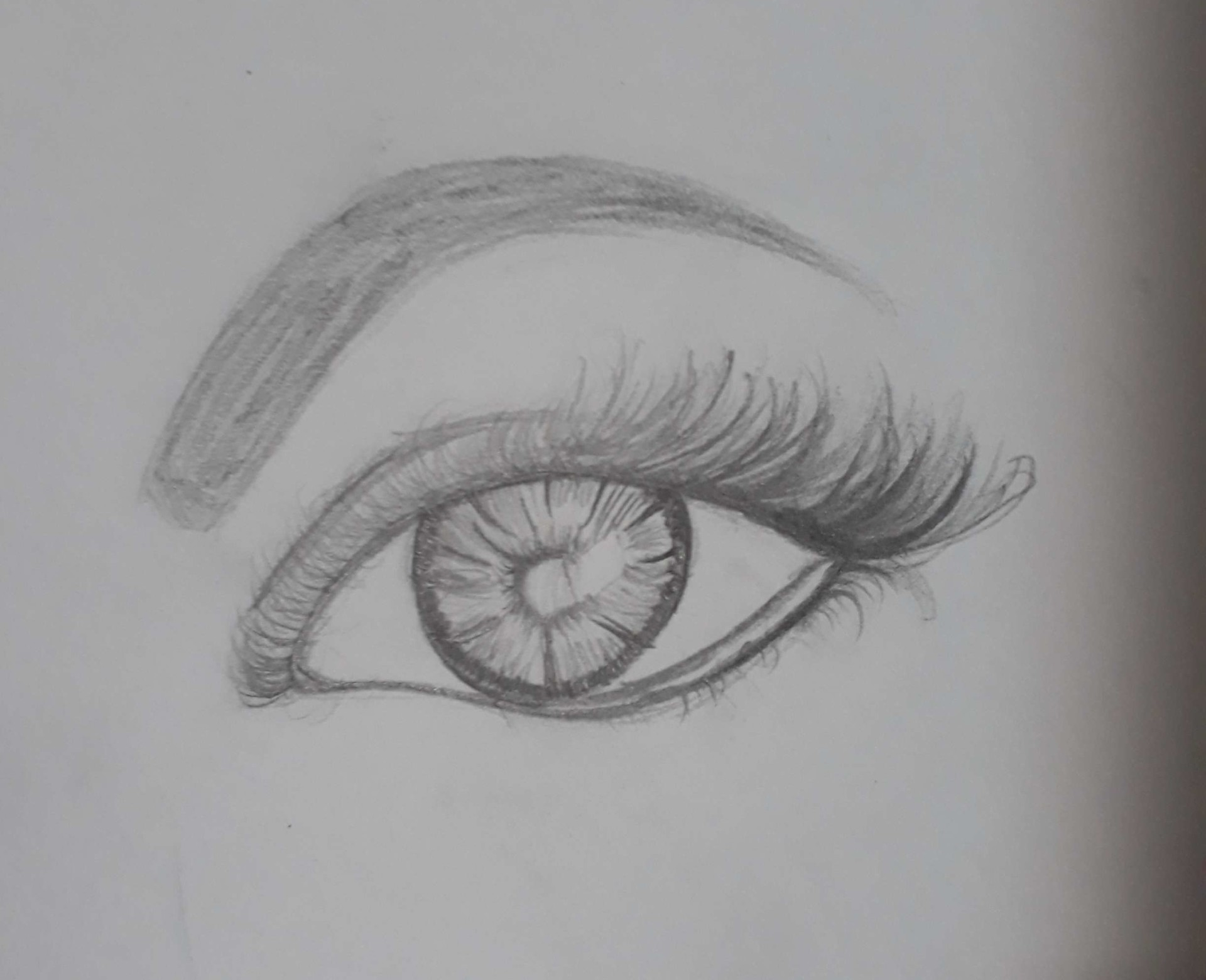 jia wen wong random small drawings