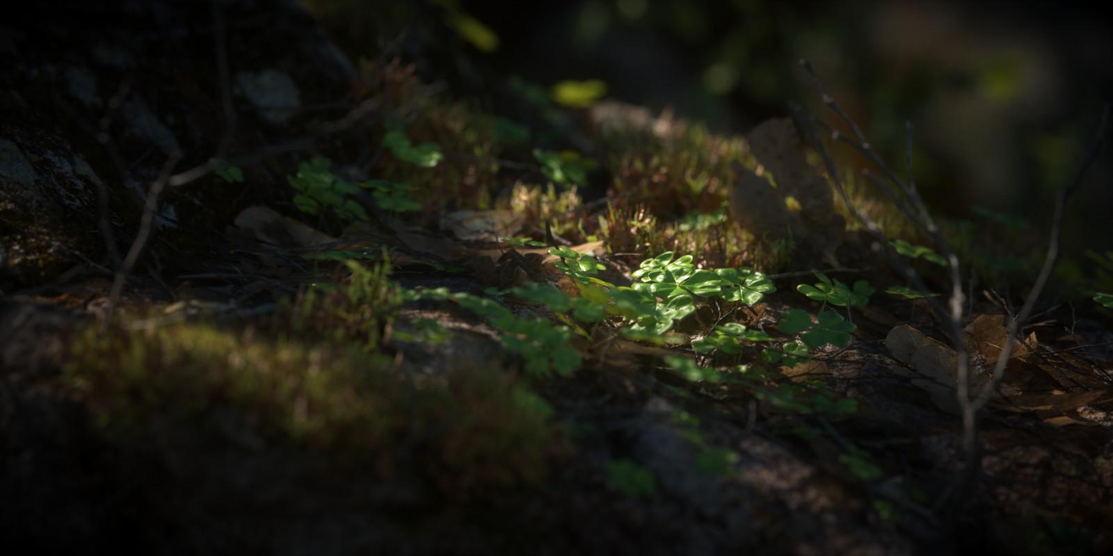 Mossy Rock - Environment Vignette no. 01