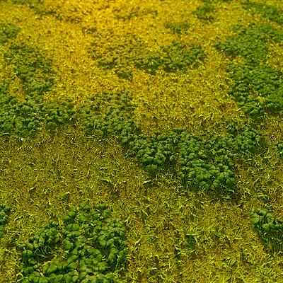 Pky sbsgrassground01 a