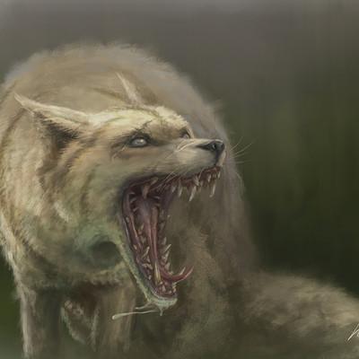Andy sutton fox v001as