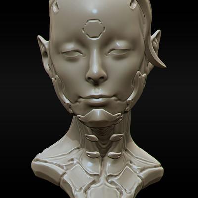 Yuan cui cyborgportrait