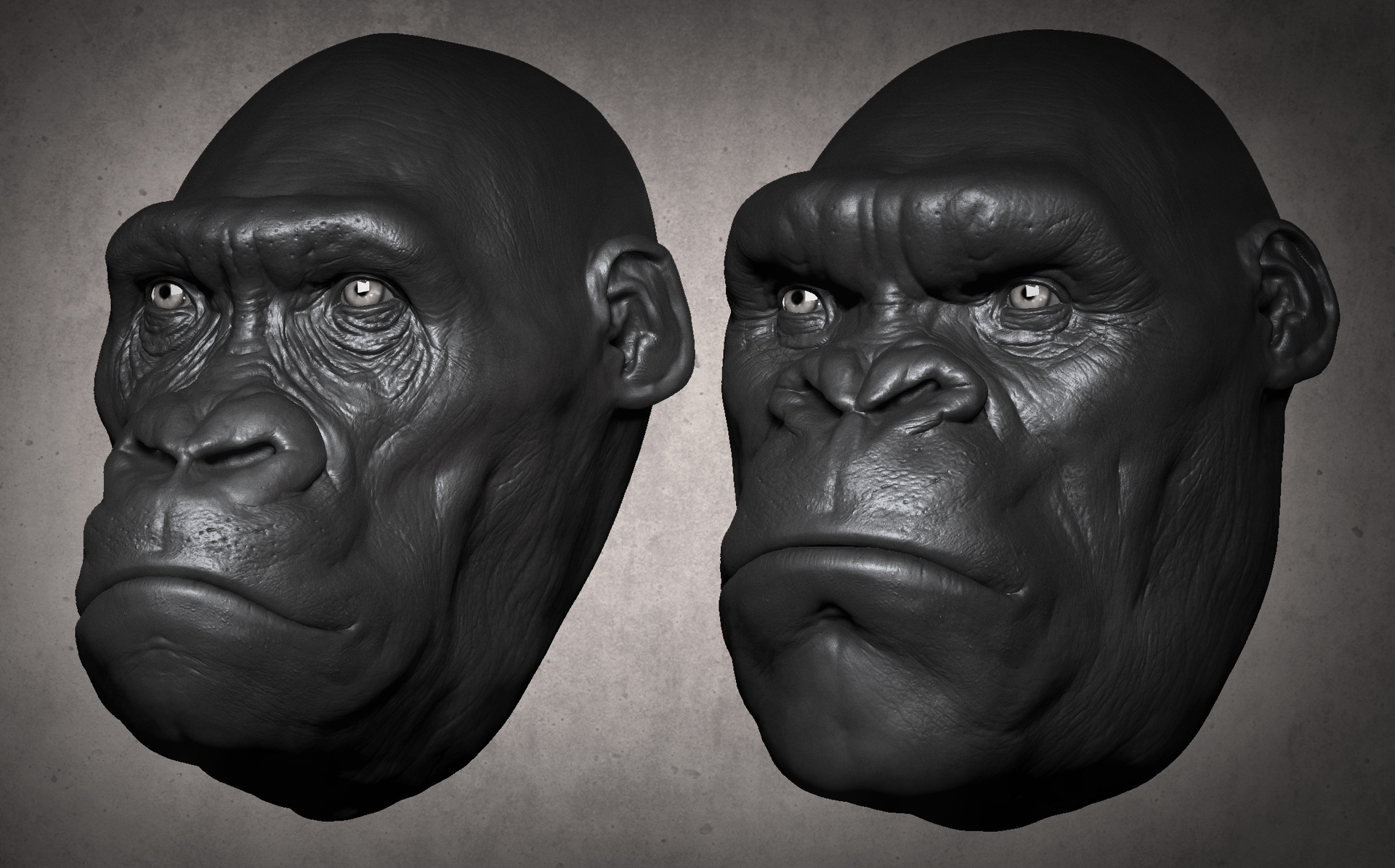 Gorilla to Kong comparison study (speed sculpt)