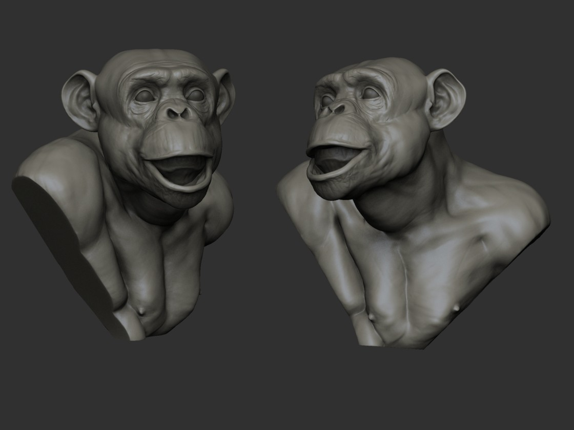 Billy lord chimp2