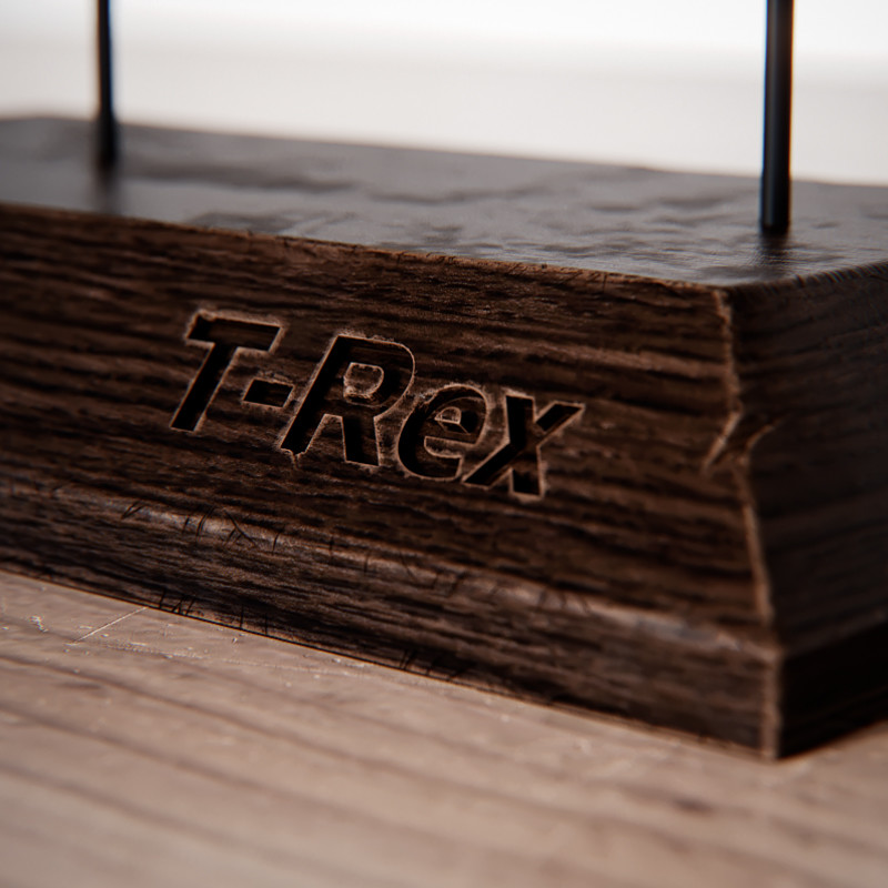 T-Rex skull - base
