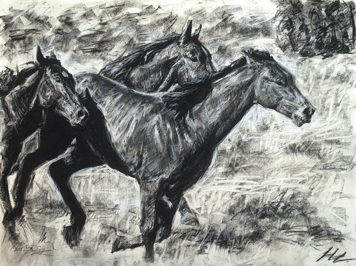 Luis leo lopez gallop