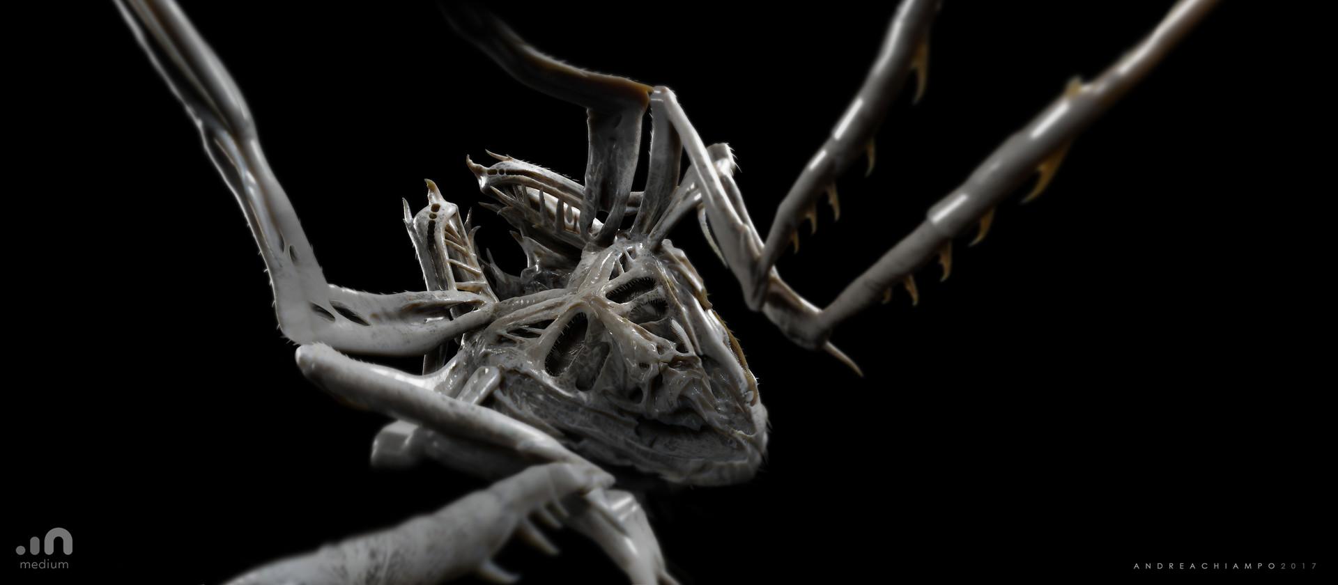 Andrea chiampo insect vr def