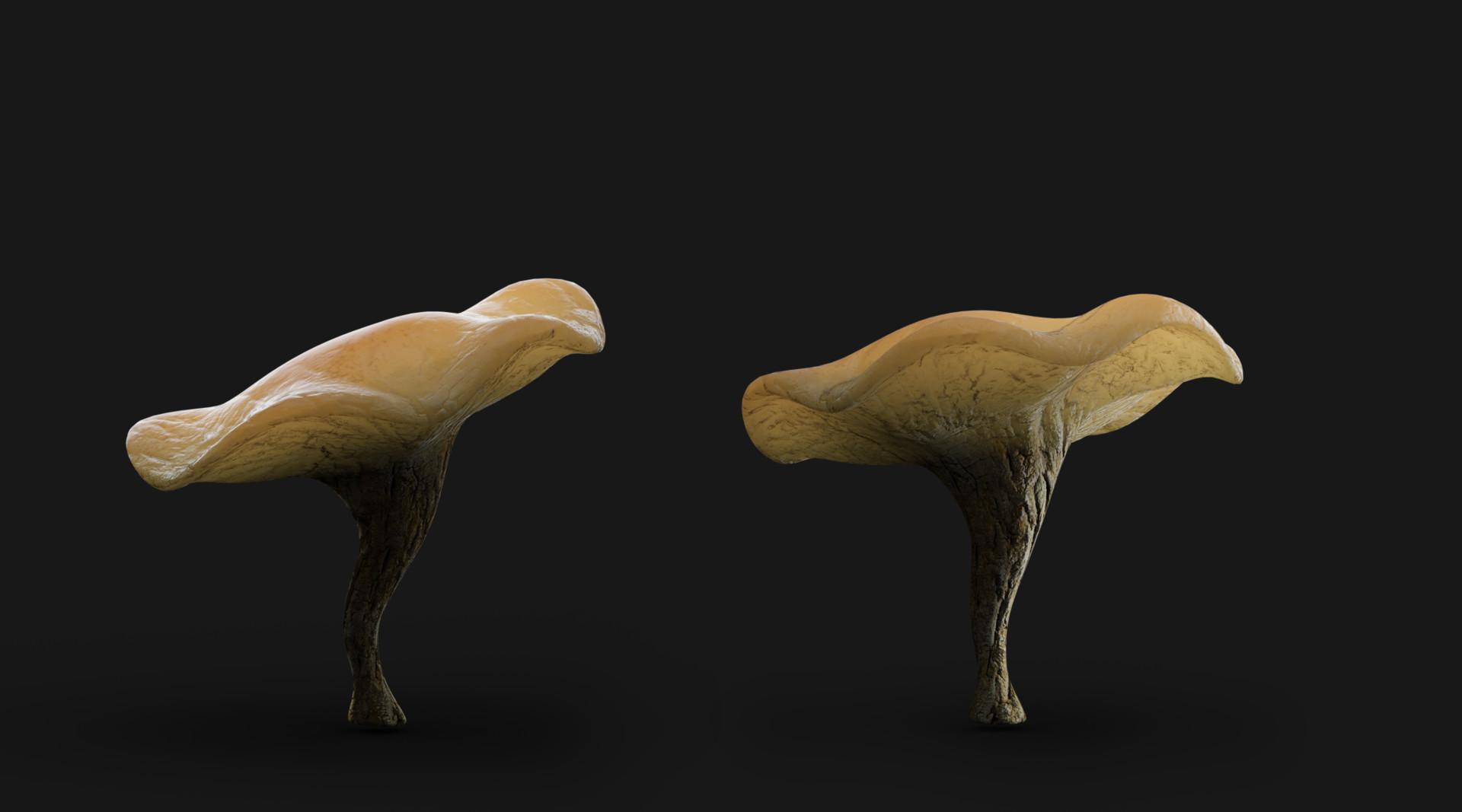 Ravissen carpenen mushroom test render merge