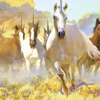 Josu solano unicorns