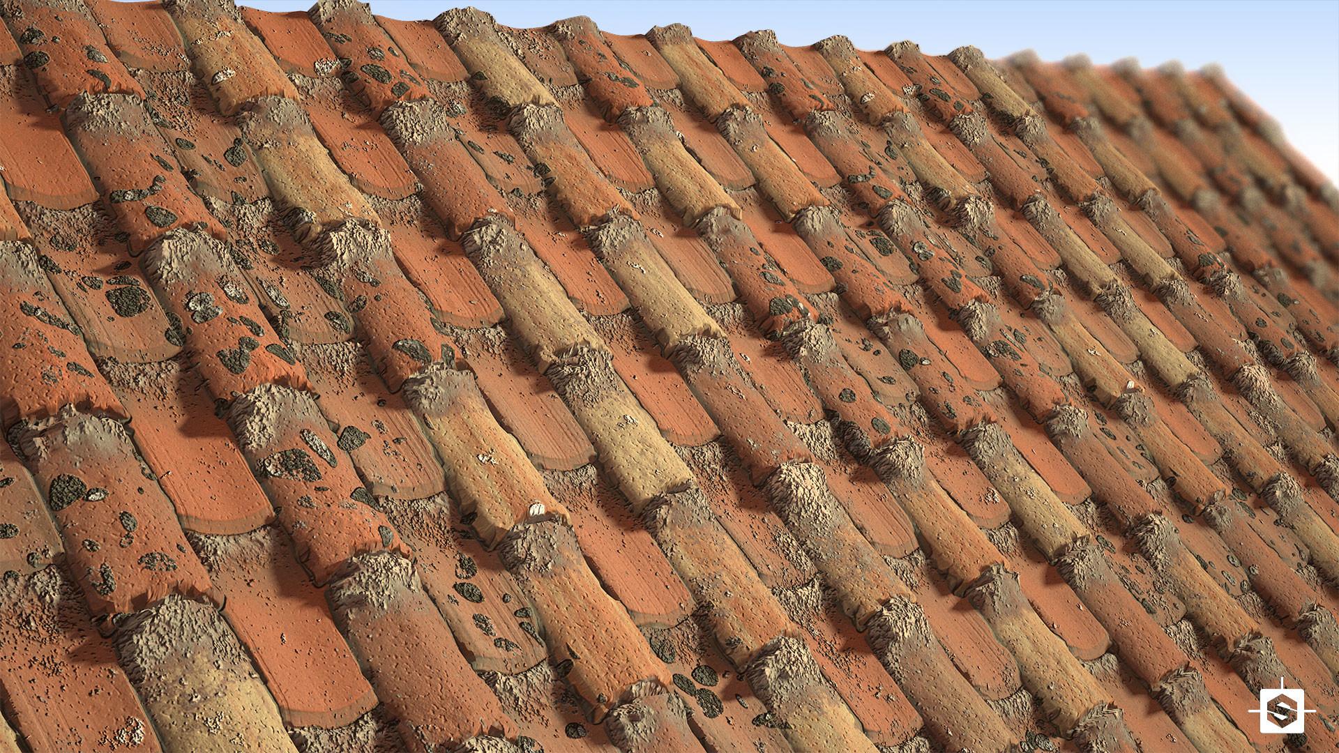 Ant skilton roof