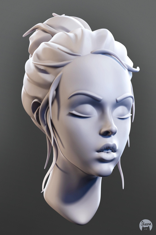 Shana vandercruysse mouth sculpt