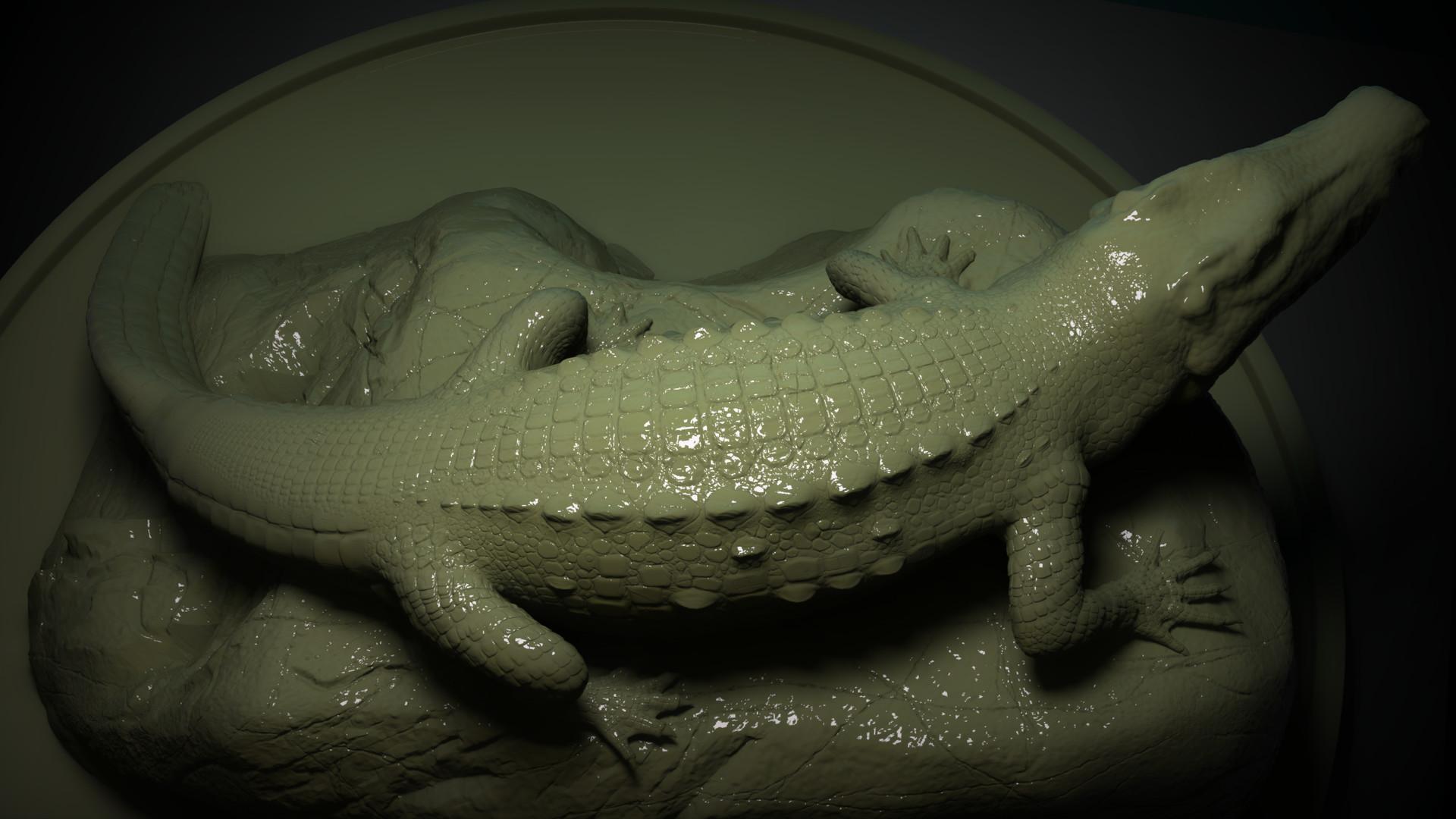 Sergio lobo crocodile back