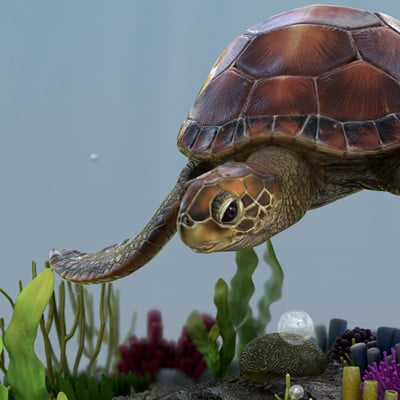 Chris aryanto sea turtle 19