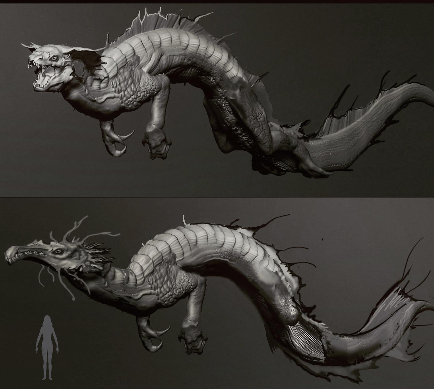 Wietze fopma rough water dragons2