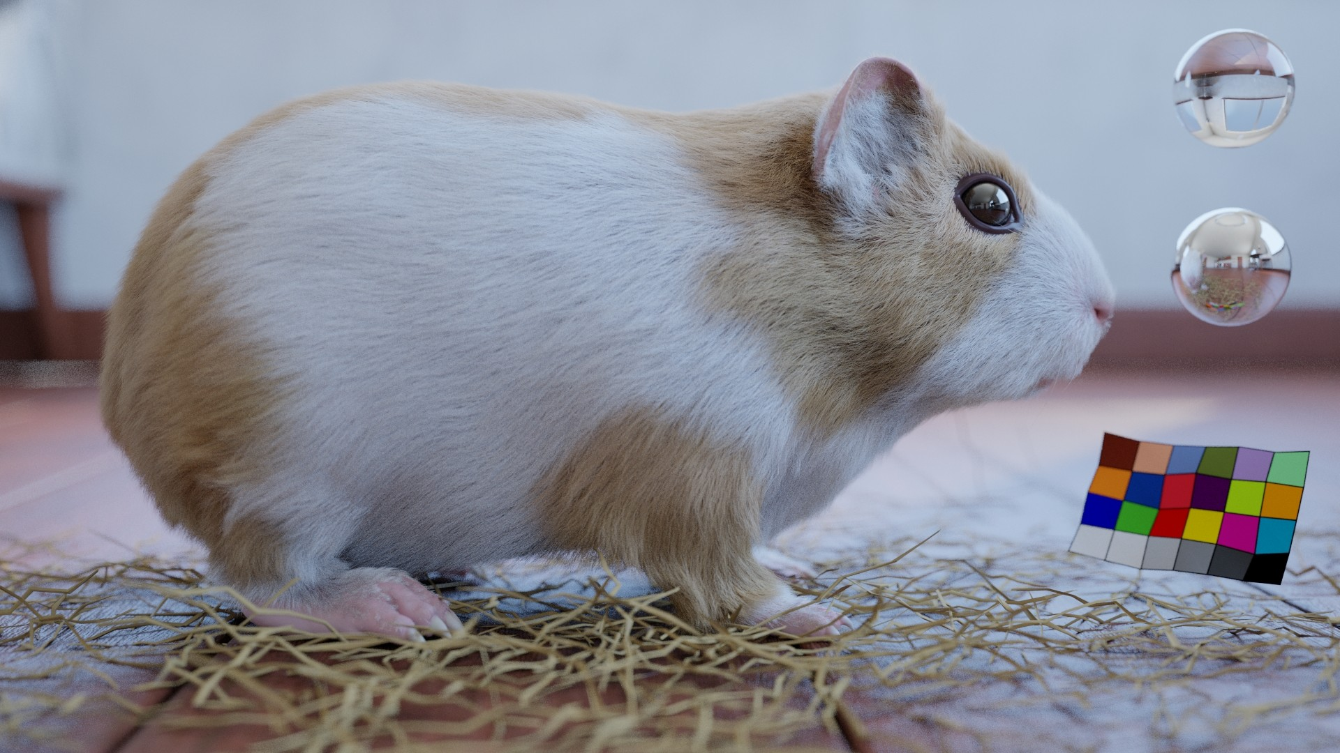 Guinea pig Look dev test.