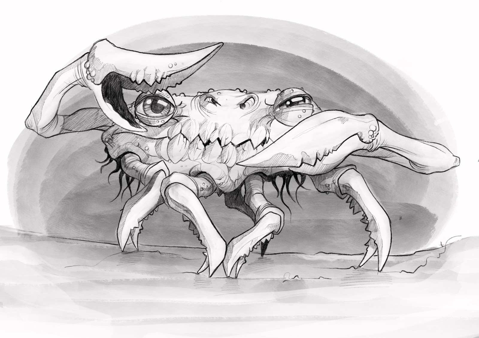 Crab - silhouette sketch