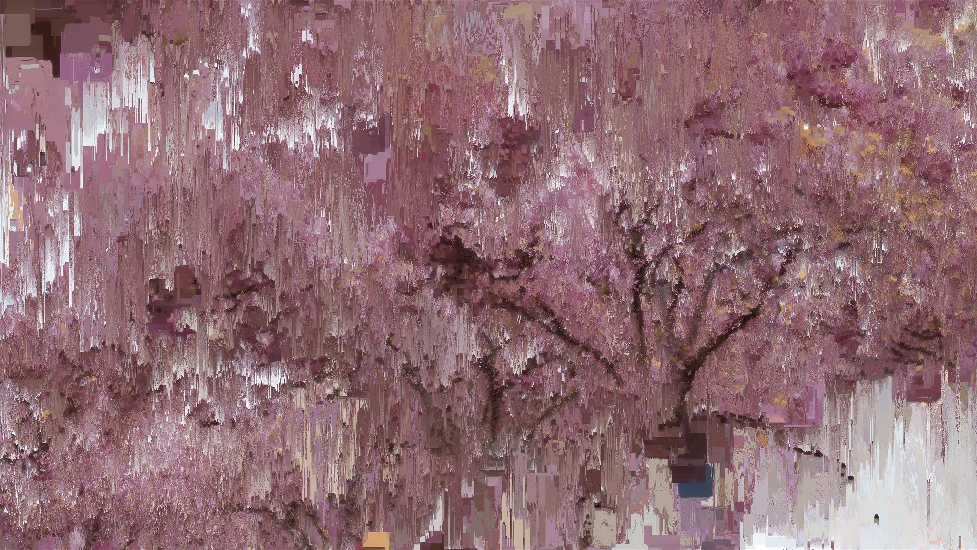 Benjamin bardou fleurs de cerisier i 00735