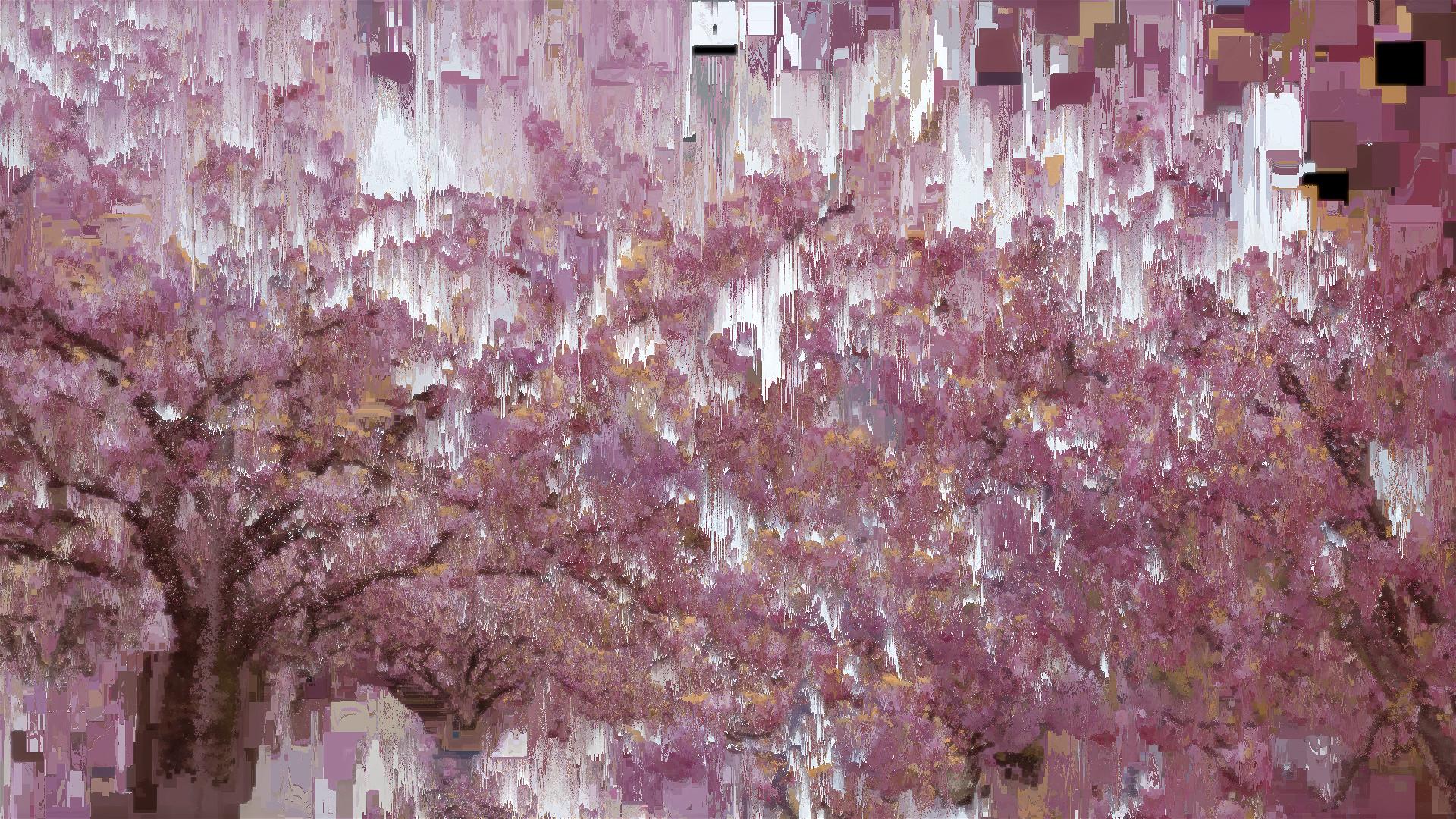 Benjamin bardou fleurs de cerisier i 00030