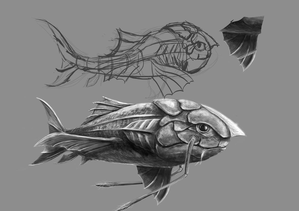 David moretto fish1