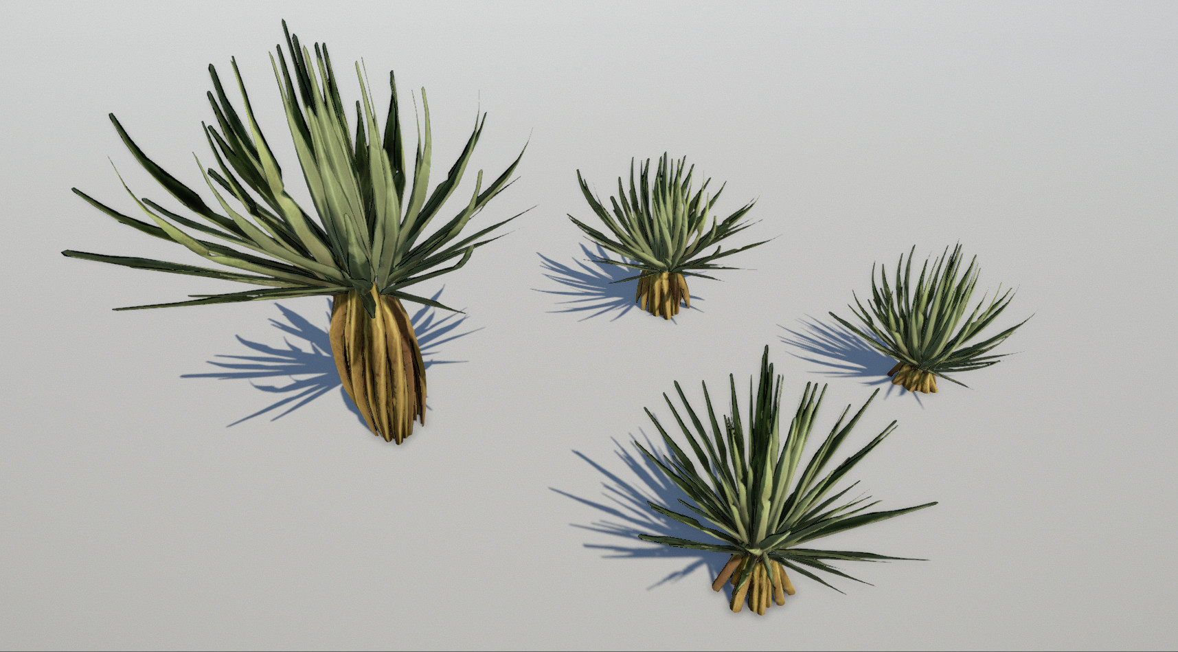 Spiny desert plant sculpted and textured in Zbrush
