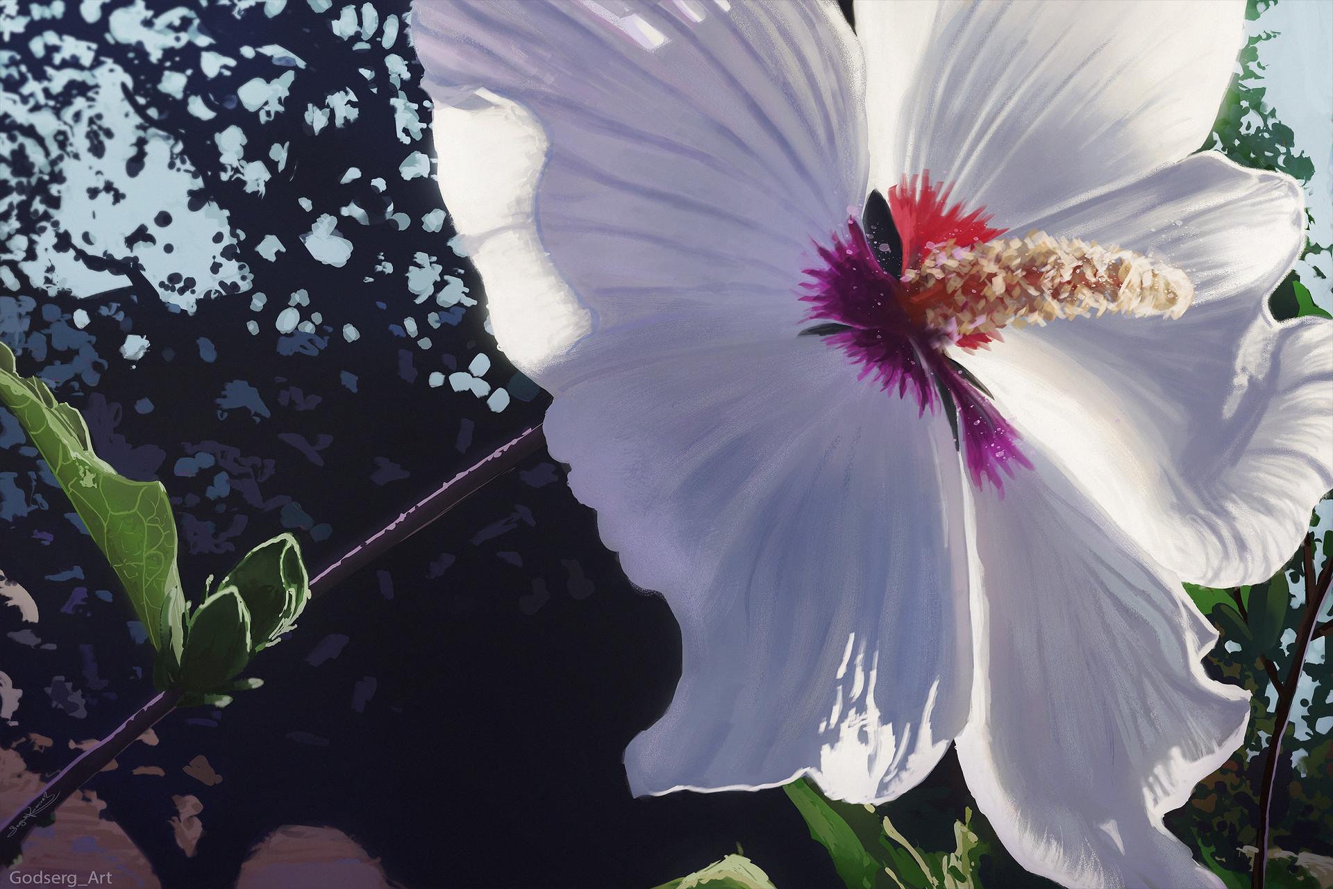 Artstation White Flower Digital Painting Godserg Art