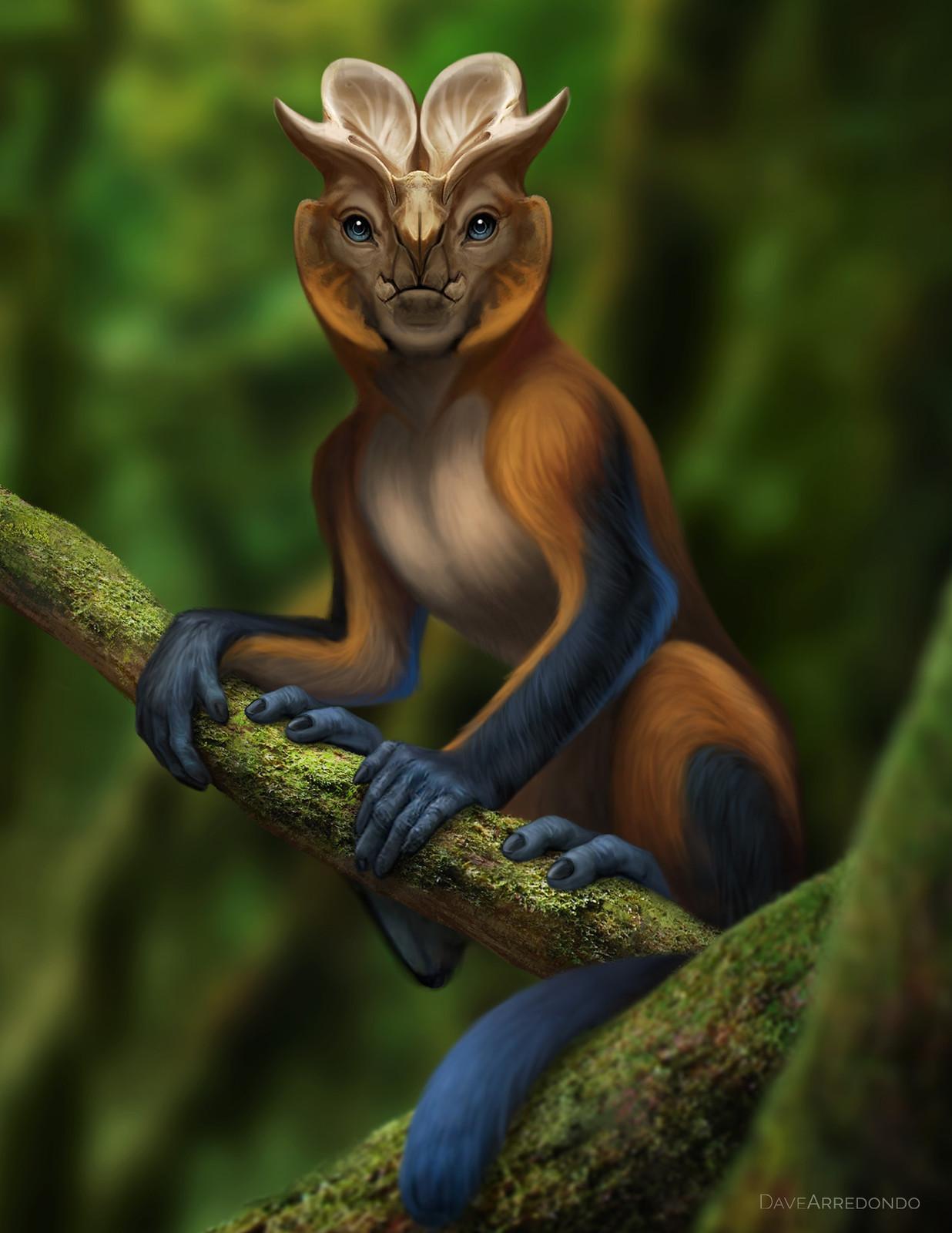 Horned Monkey of Zama