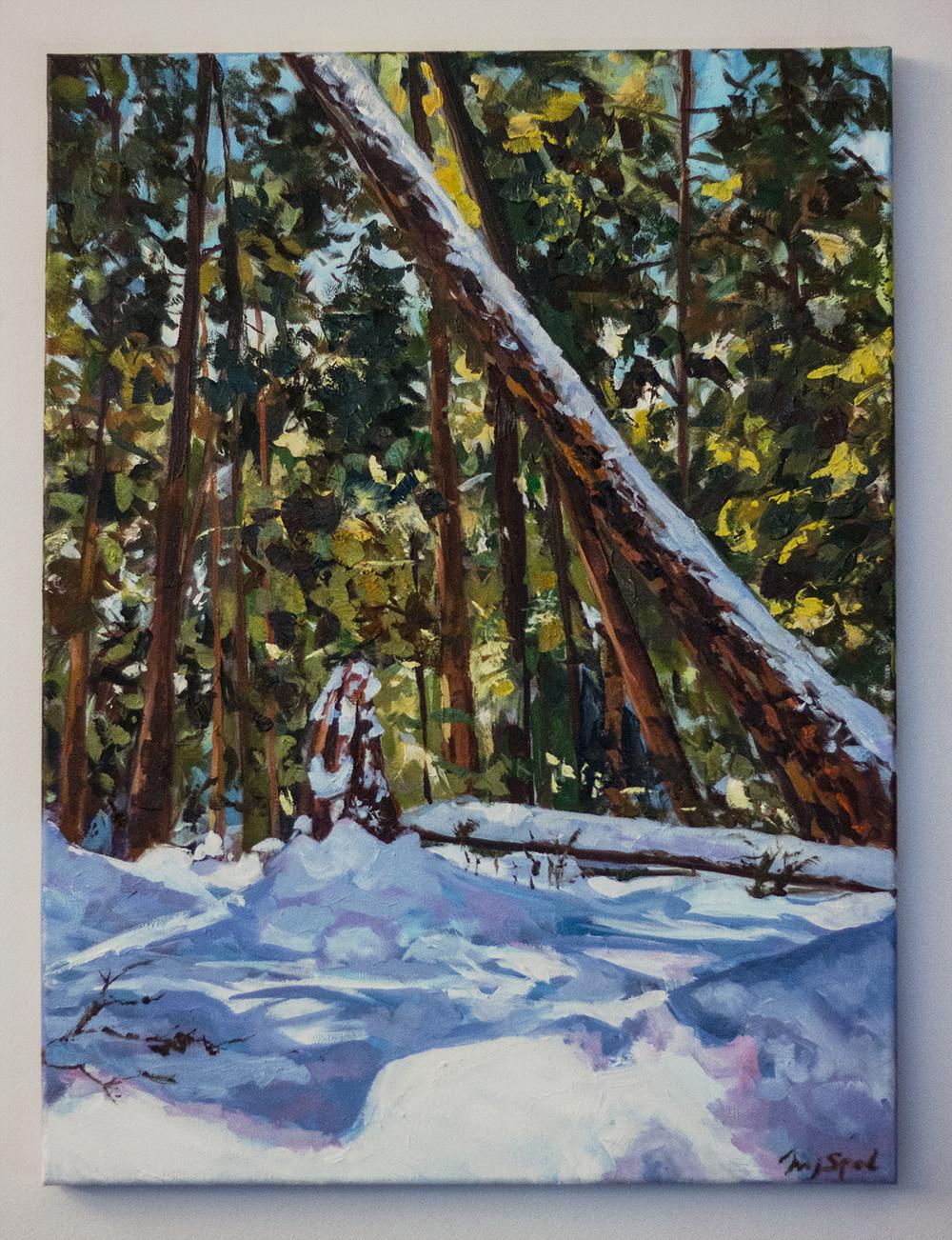 Mj venegas spadafora wide winterforest 2 low