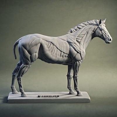 Gael kerchenbaum horse 002 md