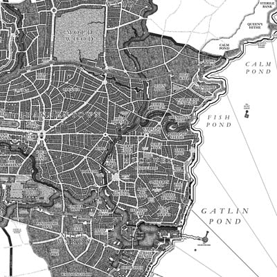 David d m cornish map brandenbrass v4 01 detail