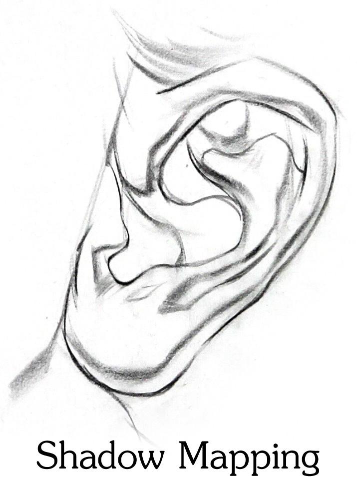 Artstation How To Draw Ears Stan Prokopenko