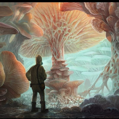 Lisa steinberg funghi