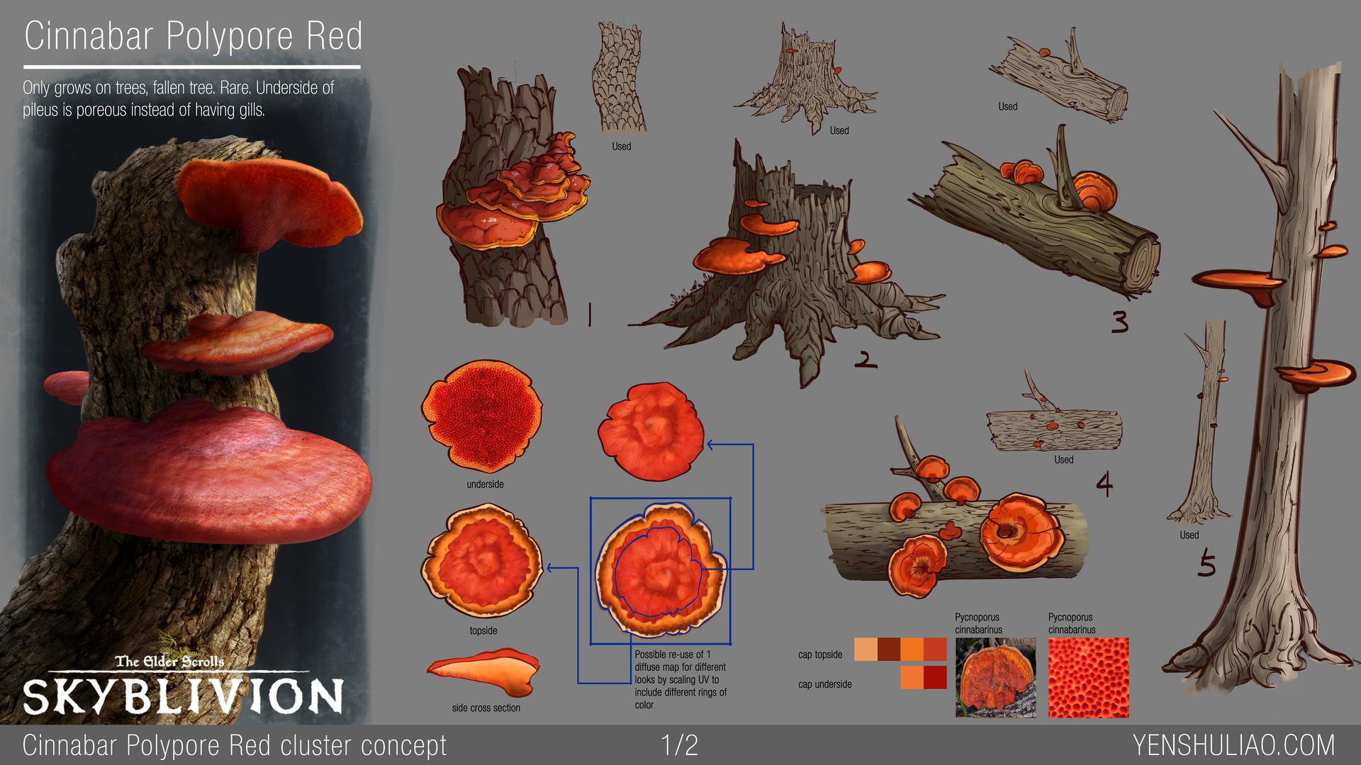 Yen shu liao mushroom environment prop concept yen shu liao skyblivion cinnabarpolypore 01