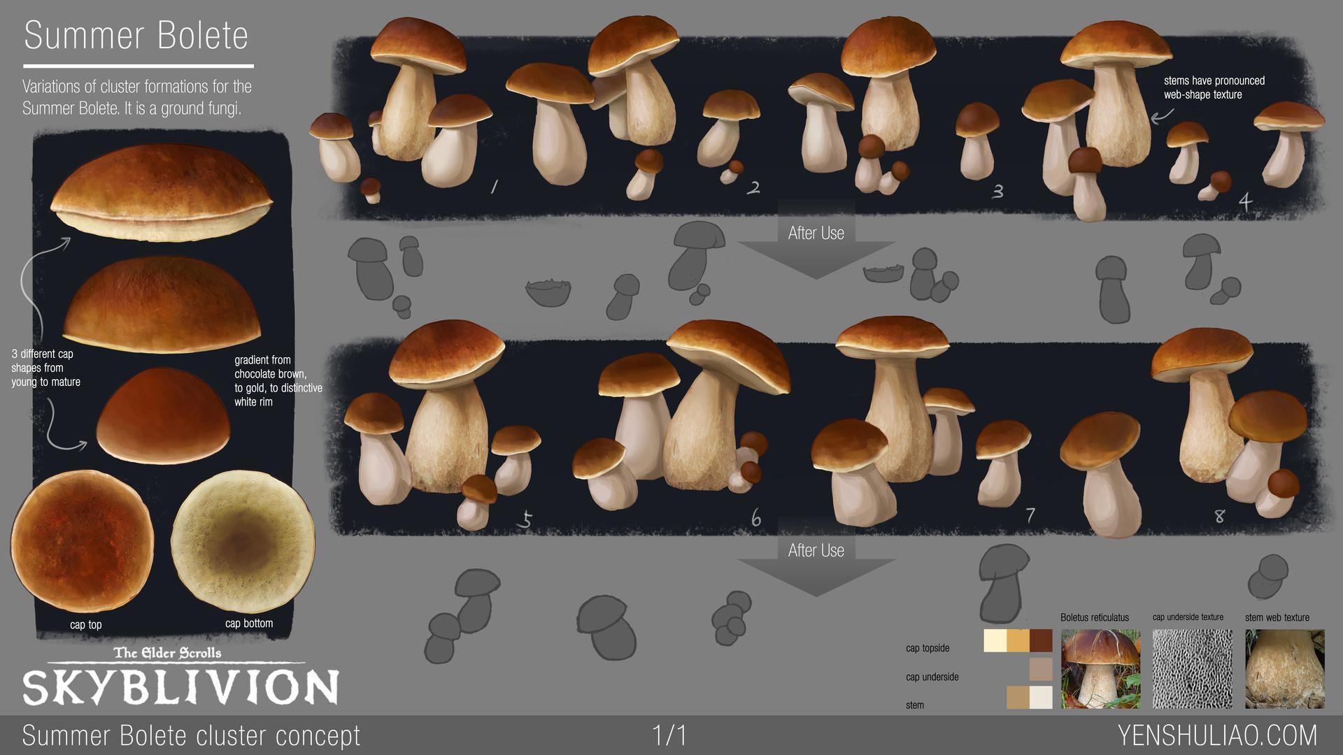 Yen shu liao mushroom environment prop concept yen shu liao skyblivion summerbolete