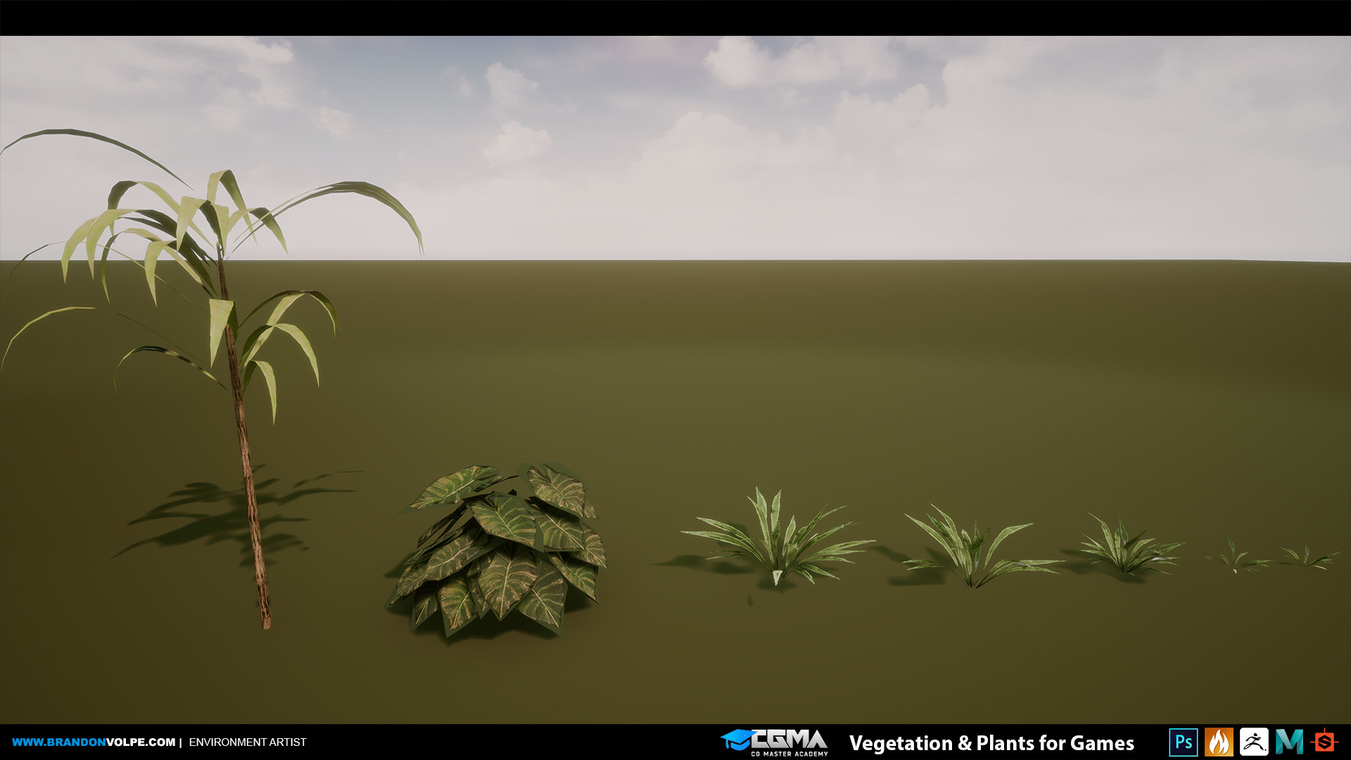 Brandon volpe brandonvolpe cgma vegplants 014