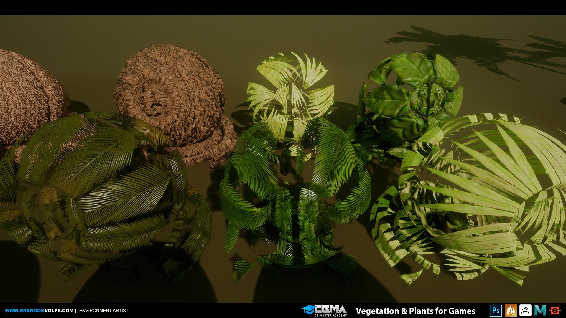Brandon volpe brandonvolpe cgma vegplants 015