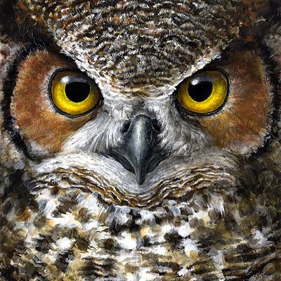 Alina godfrey owl2