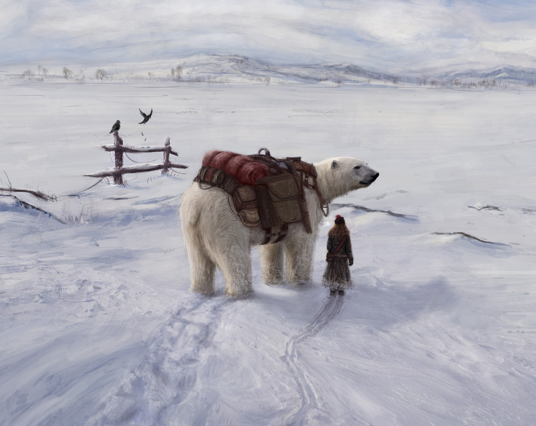 Martin seidl the girl and the ice bear nb