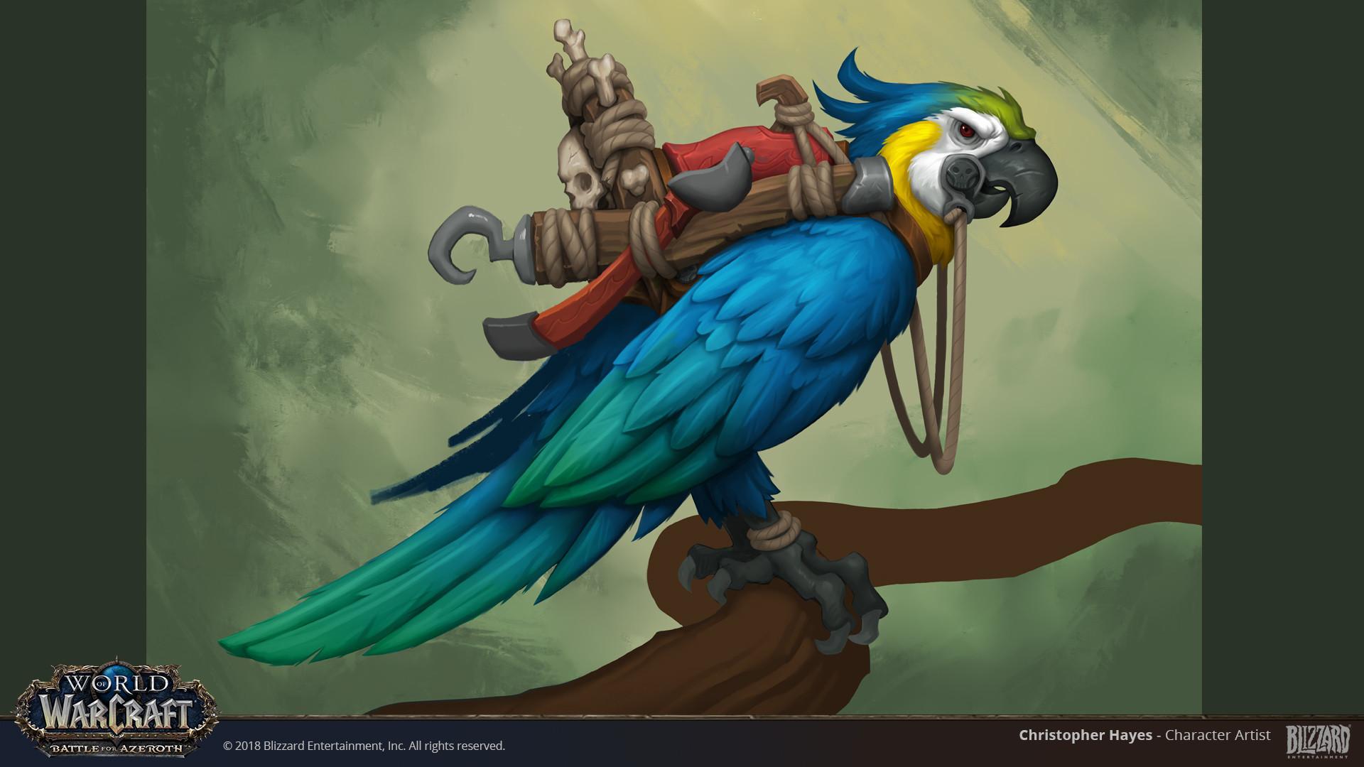 Christopher hayes bfa parrot concept