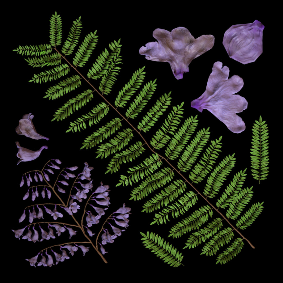 Leaf and flower textures, created in Zbrush