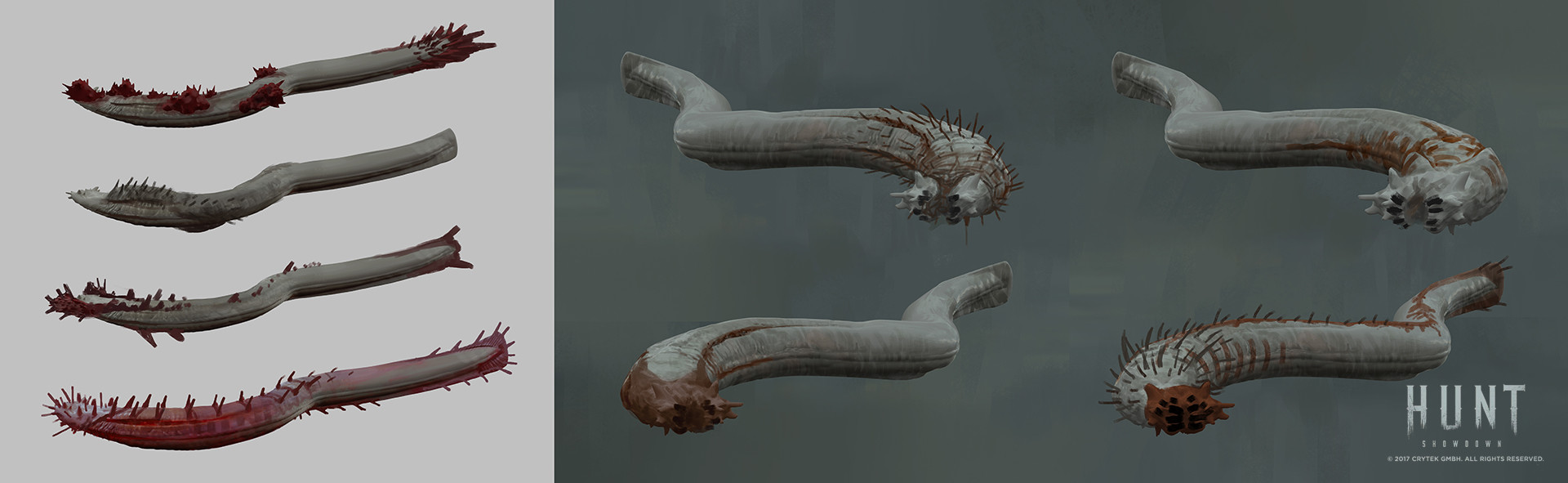 Ivo nies ivo elite eel sketches02