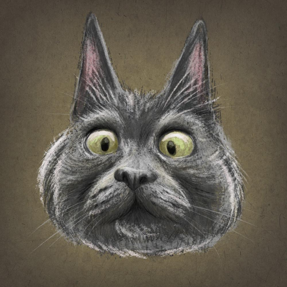 Digital Sketch based on Kev the Cat https://www.instagram.com/theadventuresofkev/