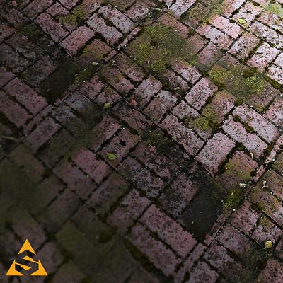 Martin pietras martin pietras mossy brick