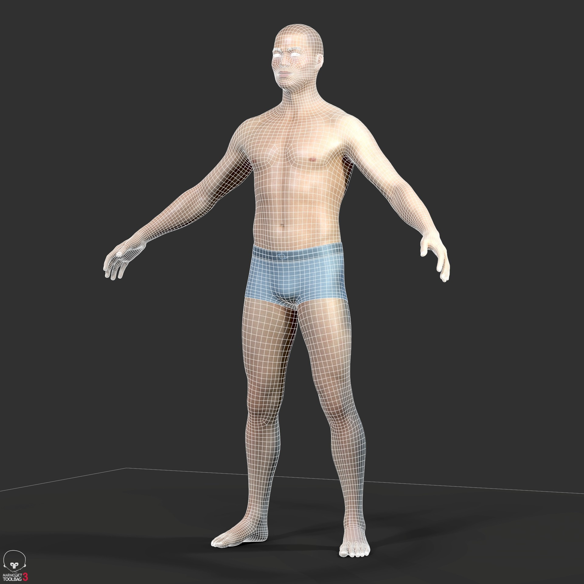 Alex lashko averageasianmalebody by alexlashko wireframe 04