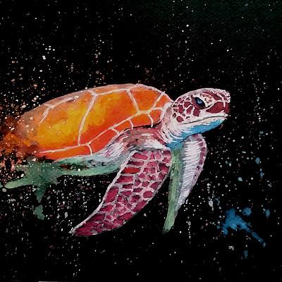 Mathieu lafay raimbow tortue paint lafay