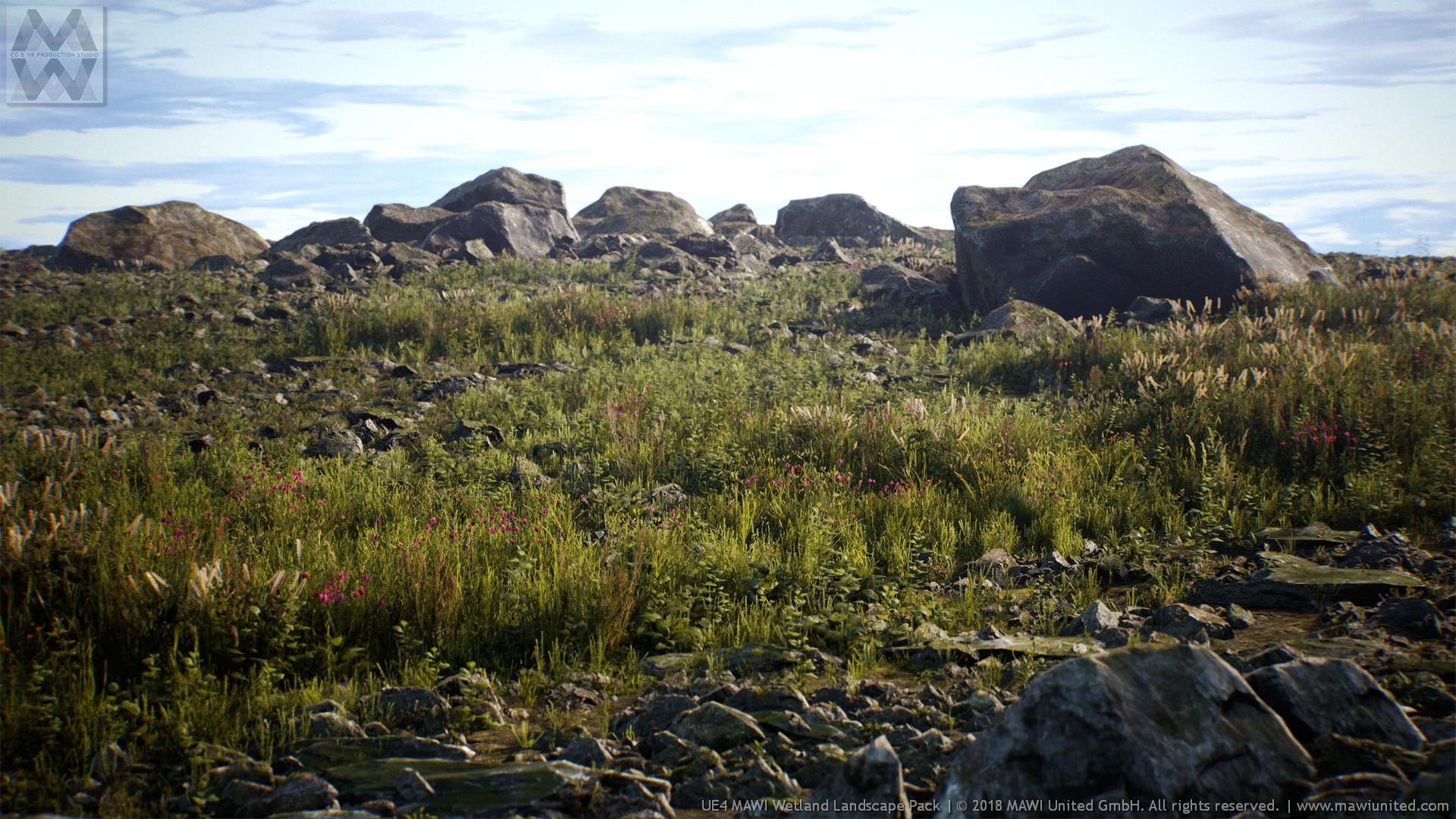 ArtStation - UE4 Wetland Landscape, Willi Hammes