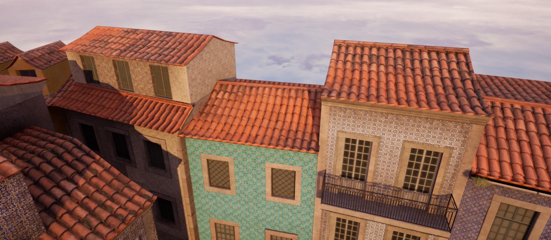 Alina godfrey roofs